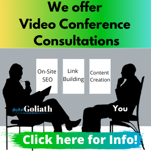 Video conference consulting