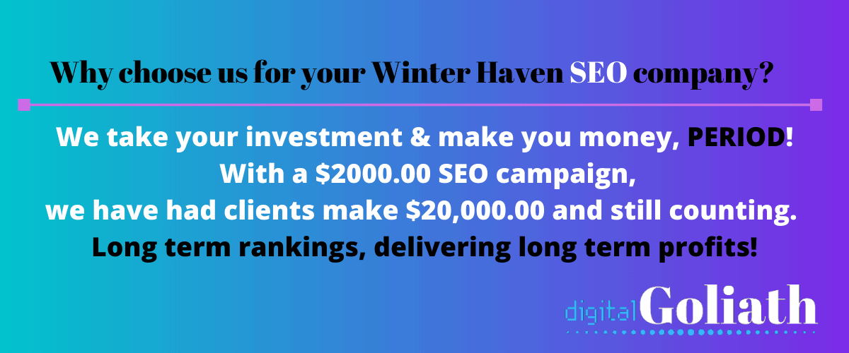 winter haven seo services